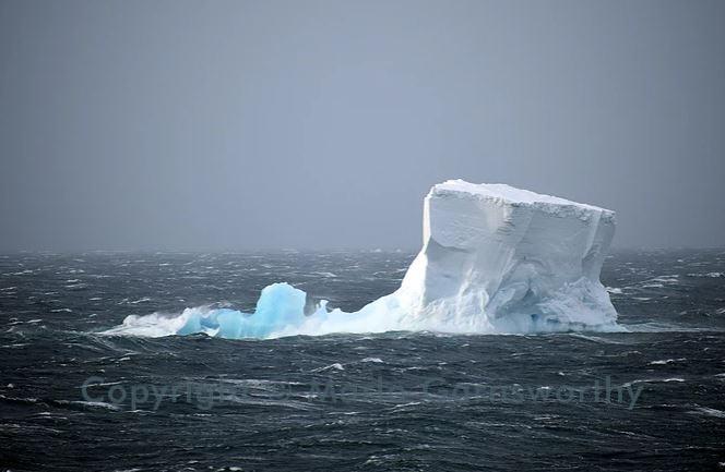 iceberg c